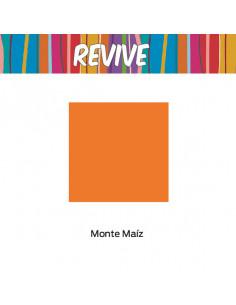 Pinturas Premium Color Monte Maíz Pinturas Pintecord